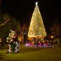ノリタケの森のクリスマスイルミネーション 2019 No - 3