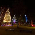 Photos: ノリタケの森のクリスマスイルミネーション 2019 No - 5