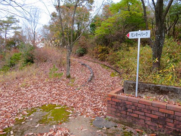 犬山善光寺 No - 22:展望台からモンキーパーク方面へと通じる道
