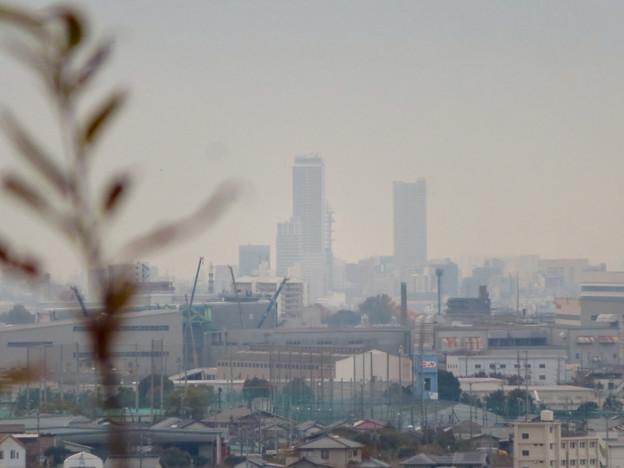 犬山善光寺の開けた所から見えた景色 No - 4:岐阜駅周辺のビル群