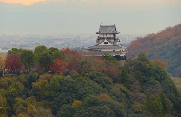 犬山善光寺の開けた所から見えた景色 No - 6:紅葉した木々と犬山城