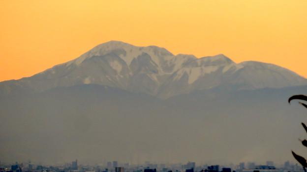 犬山善光寺の開けた所から見えた景色 No - 11:雪を頂く伊吹山