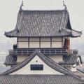 Photos: 犬山善光寺の開けた所から見えた景色 No - 12:犬山城