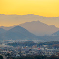 Photos: 犬山善光寺の展望台から見た景色 No - 7:岐阜城・金華山