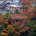 犬山善光寺の展望台から見た景色 No - 17:鵜沼城跡の岩山の頂上部の平らに整地された場所