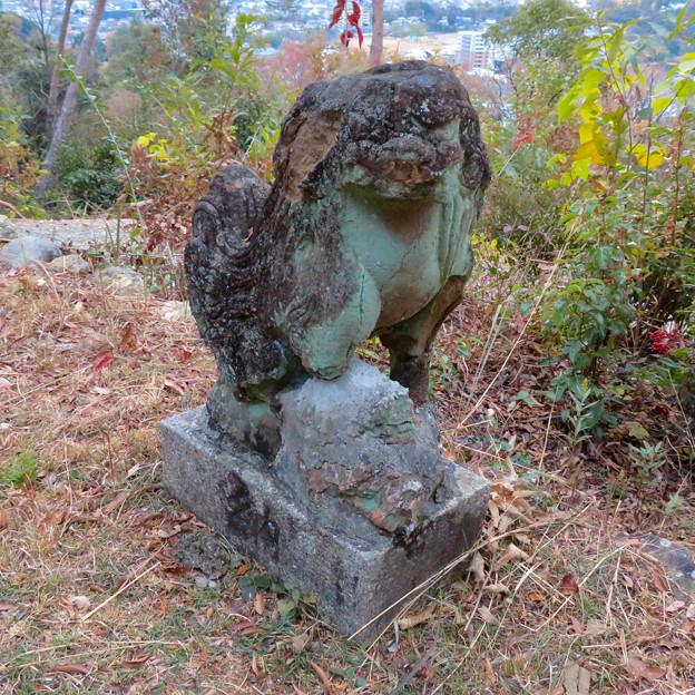 東之宮古墳 No - 12:東之宮神社の古びた狛犬
