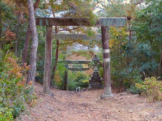 東之宮古墳 No - 19:東之宮神社の鳥居と急な坂となってる参道