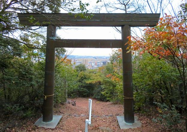 東之宮古墳 No - 20:東之宮神社の鳥居