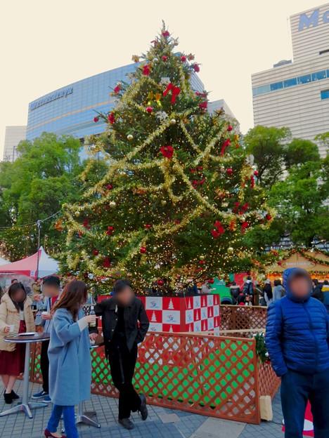 名古屋クリスマスマーケット 2019 No - 16:クリスマスツリー