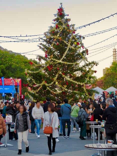 名古屋クリスマスマーケット 2019 No - 20:クリスマスツリー