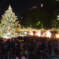 Photos: 夜の名古屋クリスマスマーケット 2019 No - 7