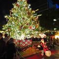 Photos: 夜の名古屋クリスマスマーケット 2019 No - 12;クリスマスツリーとサンタクロース