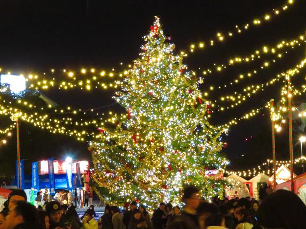 Photos: 夜の名古屋クリスマスマーケット 2019 No - 21
