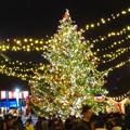 夜の名古屋クリスマスマーケット 2019 No - 21