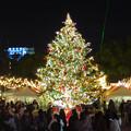 夜の名古屋クリスマスマーケット 2019 No - 27