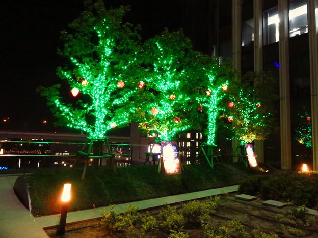 グローバルゲート5階の1ヶ所だけ行われてたクリスマスイルミネーション - 2