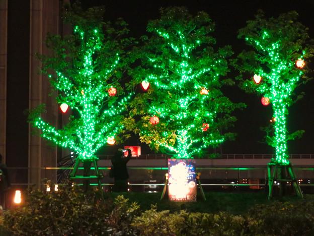グローバルゲート5階の1ヶ所だけ行われてたクリスマスイルミネーション - 3
