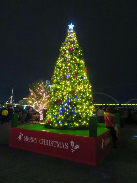 JETTY前のクリスマスツリー