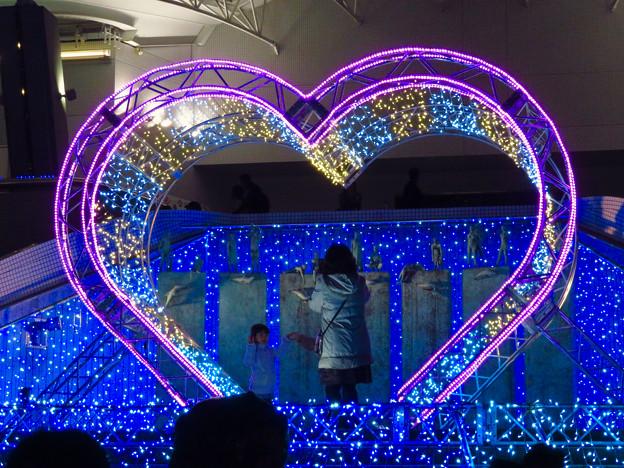 名古屋港水族館入り口のハートの記念撮影スポット - 8