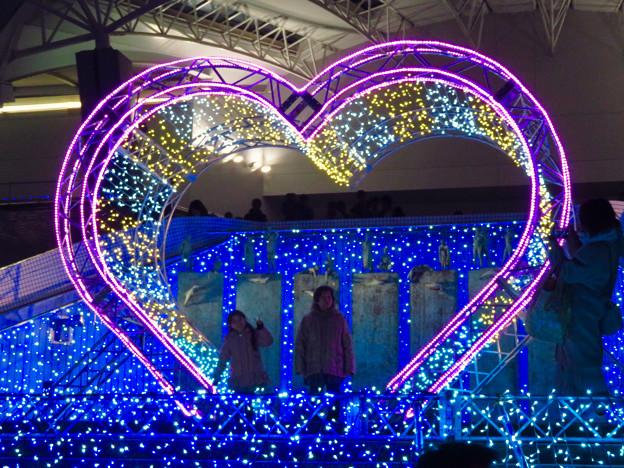 名古屋港水族館入り口のハートの記念撮影スポット - 11