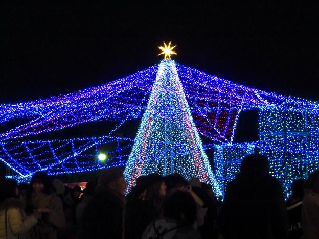 ガーデンふ頭臨港緑園のクリスマスイルミネーション - 2