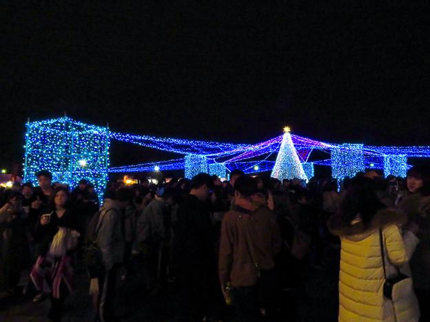ガーデンふ頭臨港緑園のクリスマスイルミネーション - 3