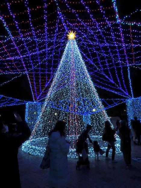 ガーデンふ頭臨港緑園のクリスマスイルミネーション - 5