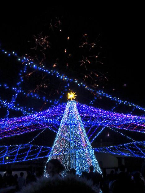 ガーデンふ頭臨港緑園のクリスマスイルミネーション - 7