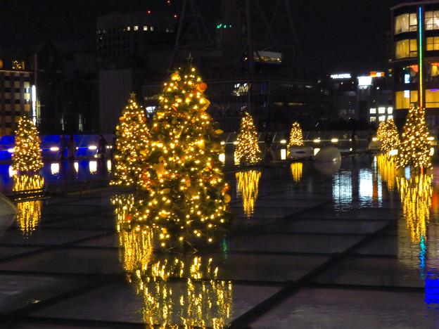 オアシス21:今年のクリスマスイルミネーションは沢山のツリーが並ぶ「ウォーターツリークリスマス」- 4