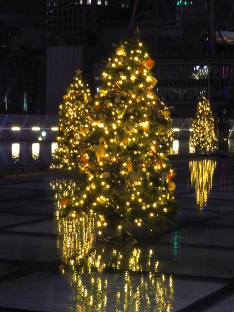 オアシス21:今年のクリスマスイルミネーションは沢山のツリーが並ぶ「ウォーターツリークリスマス」- 5