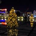 Photos: オアシス21:今年のクリスマスイルミネーションは沢山のツリーが並ぶ「ウォーターツリークリスマス」- 6