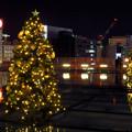オアシス21:今年のクリスマスイルミネーションは沢山のツリーが並ぶ「ウォーターツリークリスマス」- 7