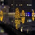 オアシス21:今年のクリスマスイルミネーションは沢山のツリーが並ぶ「ウォーターツリークリスマス」- 8