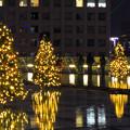 オアシス21:今年のクリスマスイルミネーションは沢山のツリーが並ぶ「ウォーターツリークリスマス」- 9