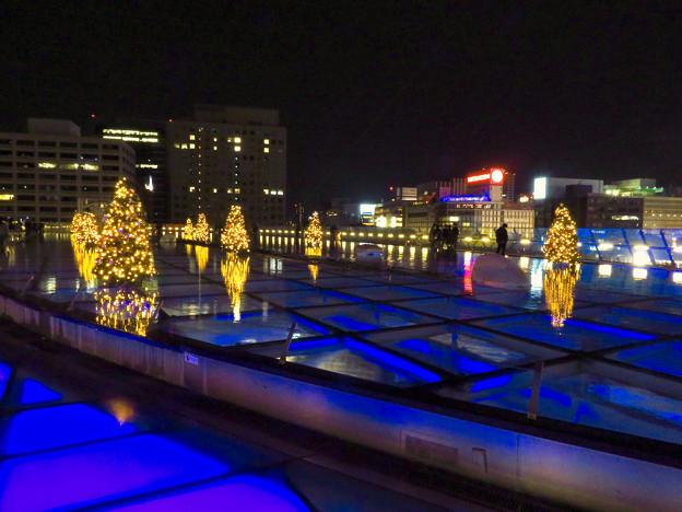 オアシス21:今年のクリスマスイルミネーションは沢山のツリーが並ぶ「ウォーターツリークリスマス」- 10