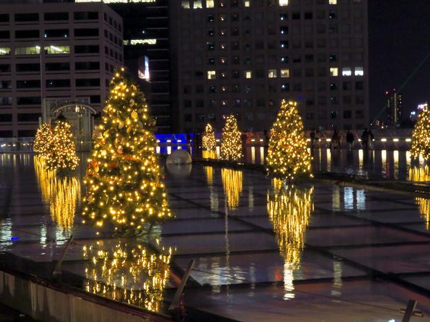 オアシス21:今年のクリスマスイルミネーションは沢山のツリーが並ぶ「ウォーターツリークリスマス」- 12