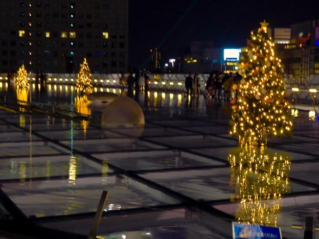 オアシス21:今年のクリスマスイルミネーションは沢山のツリーが並ぶ「ウォーターツリークリスマス」- 13