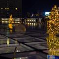 Photos: オアシス21:今年のクリスマスイルミネーションは沢山のツリーが並ぶ「ウォーターツリークリスマス」- 13