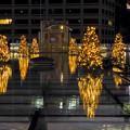 オアシス21:今年のクリスマスイルミネーションは沢山のツリーが並ぶ「ウォーターツリークリスマス」- 14