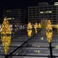 オアシス21:今年のクリスマスイルミネーションは沢山のツリーが並ぶ「ウォーターツリークリスマス」- 16