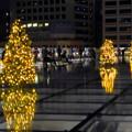 オアシス21:今年のクリスマスイルミネーションは沢山のツリーが並ぶ「ウォーターツリークリスマス」- 17