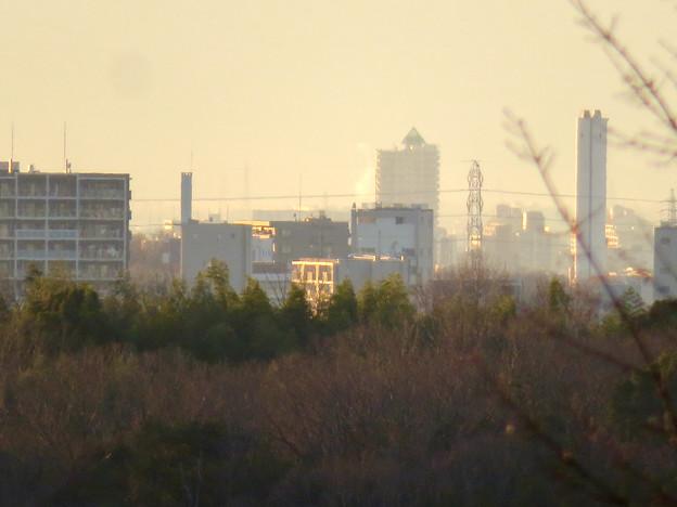 愛・地球博記念公園から見たアンビックス志賀ストリートタワー - 1