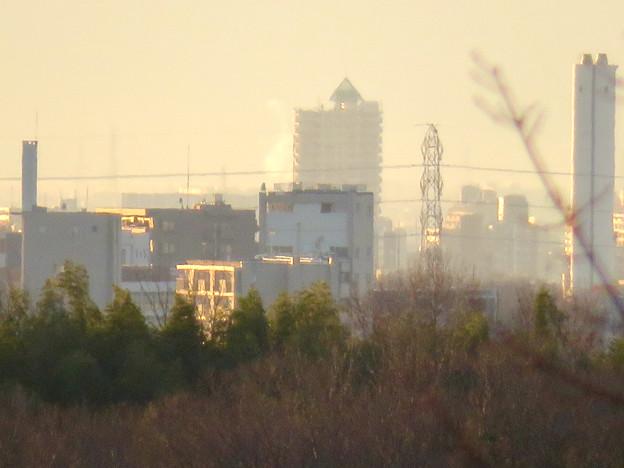 愛・地球博記念公園から見たアンビックス志賀ストリートタワー - 2