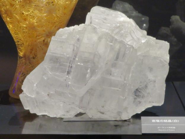 愛・地球博記念館 No - 20:岩塩の結晶(白)