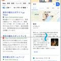 Photos: DuckDuckGoとGoogle検索の比較 - 1