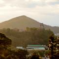 犬山成田山から見た夕暮れ時の犬山城 - 6