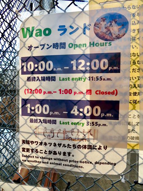 日本モンキーセンターの「WAOランド」- 7:オープン時間