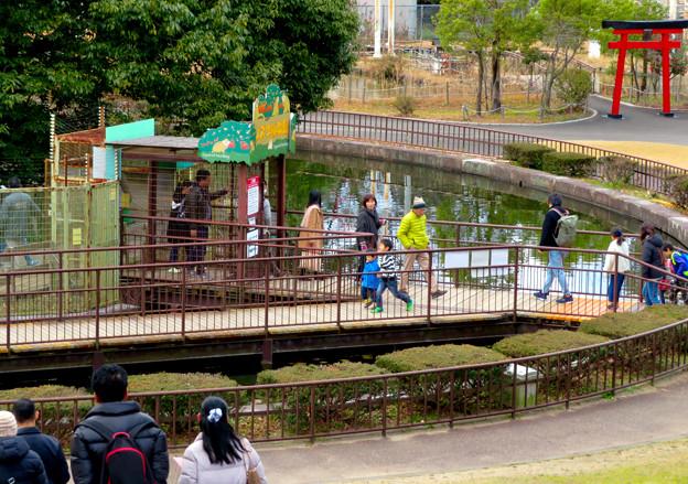 日本モンキーセンター「リスザルの森」- 4:出入り口