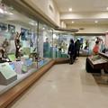Photos: 日本モンキーセンター「ビジターセンター」 - 7