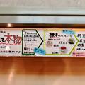 Photos: 日本モンキーセンター「ビジターセンター」 - 13:展示中の剥製は元は全てモンキーセンター飼育の猿!